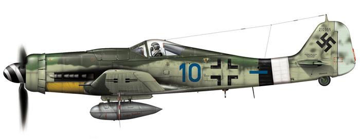 FW-190-D-Blaue-10ee_1.jpg